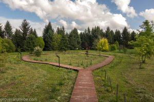 Юбилейная экспозиция к 25-летию национального парка Плещеево озеро