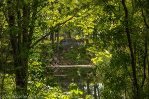 Каскад прудов. Ботанический сад. Фото