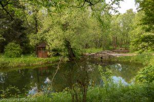 Каскад прудов. Каменный мостик. Ботанический сад. Фото