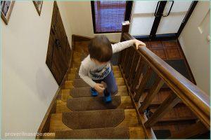 Бугров Хостел. Лестница на 2 этаж