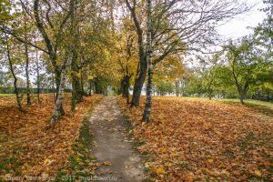 Болдинская осень. Фото