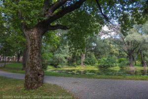 Верхний пруд. Музей усадьба Пушкина в Болдино