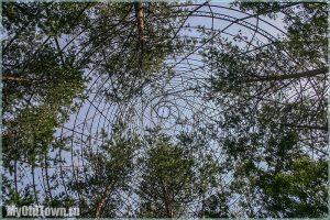 Раньше внутри башни Шухова росли деревья