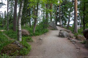 Парк Монрепо. Дорожки для туристов по скальному парку